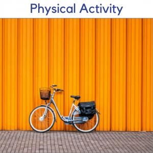 Physical Activity2